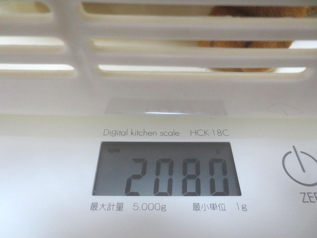 アビのすけの体重は2,080gでした。