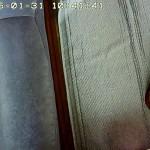 Webカメラを見るアビのすけ。