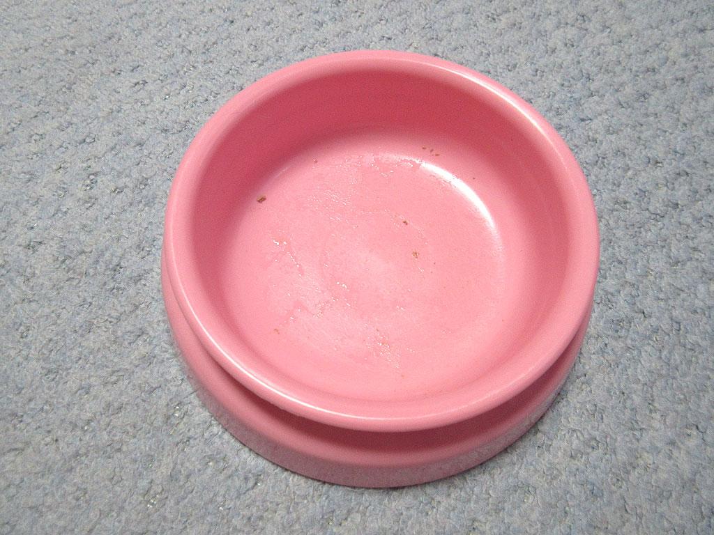 完食後のアビのすけのお皿。