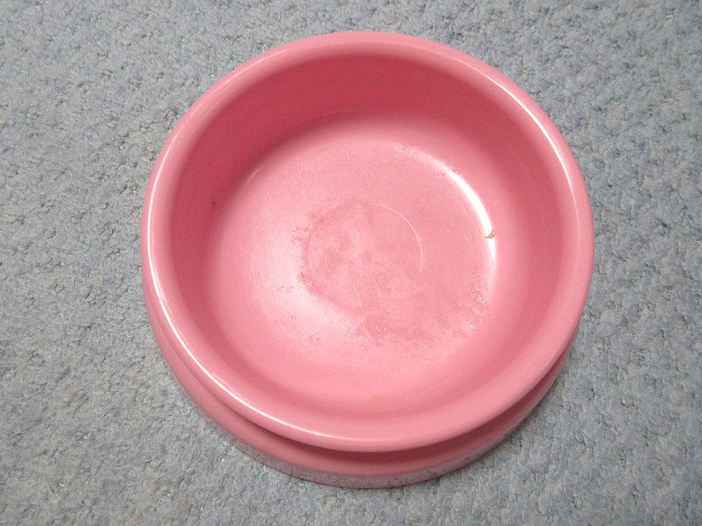 ピカピカのアビのすけのお皿。