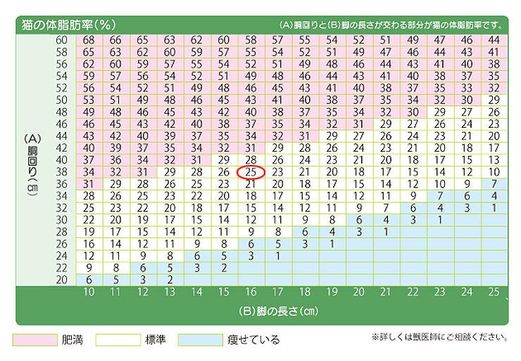 アビのすけの体脂肪率の測定。