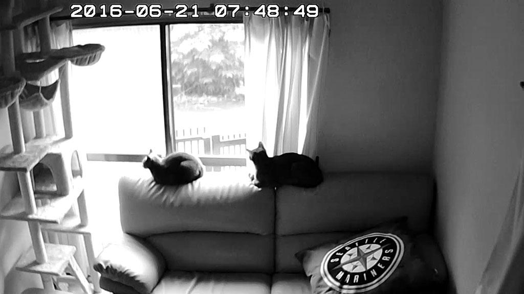 暗視状態のWebカメラ。