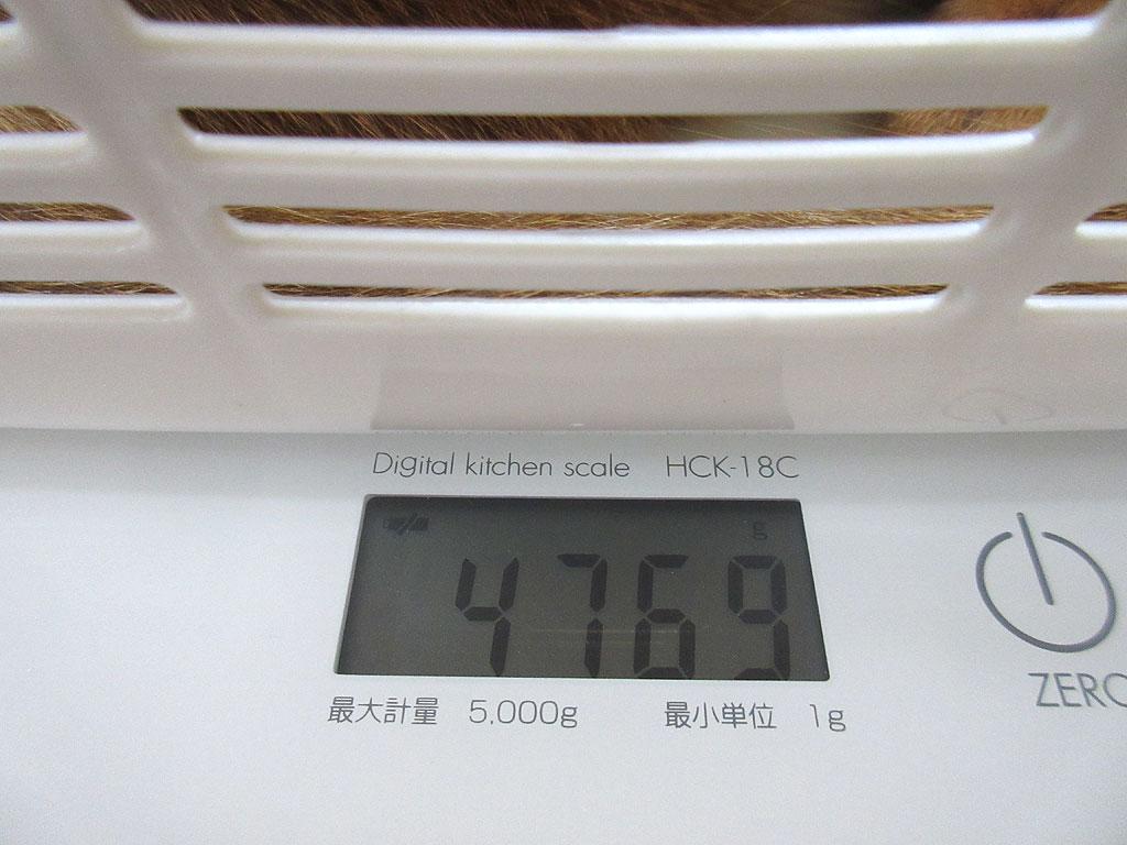 アビのすけの体重は4,769g。