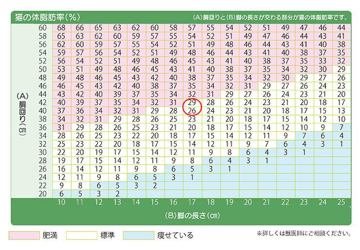 アビのすけの体脂肪率は27.5%。