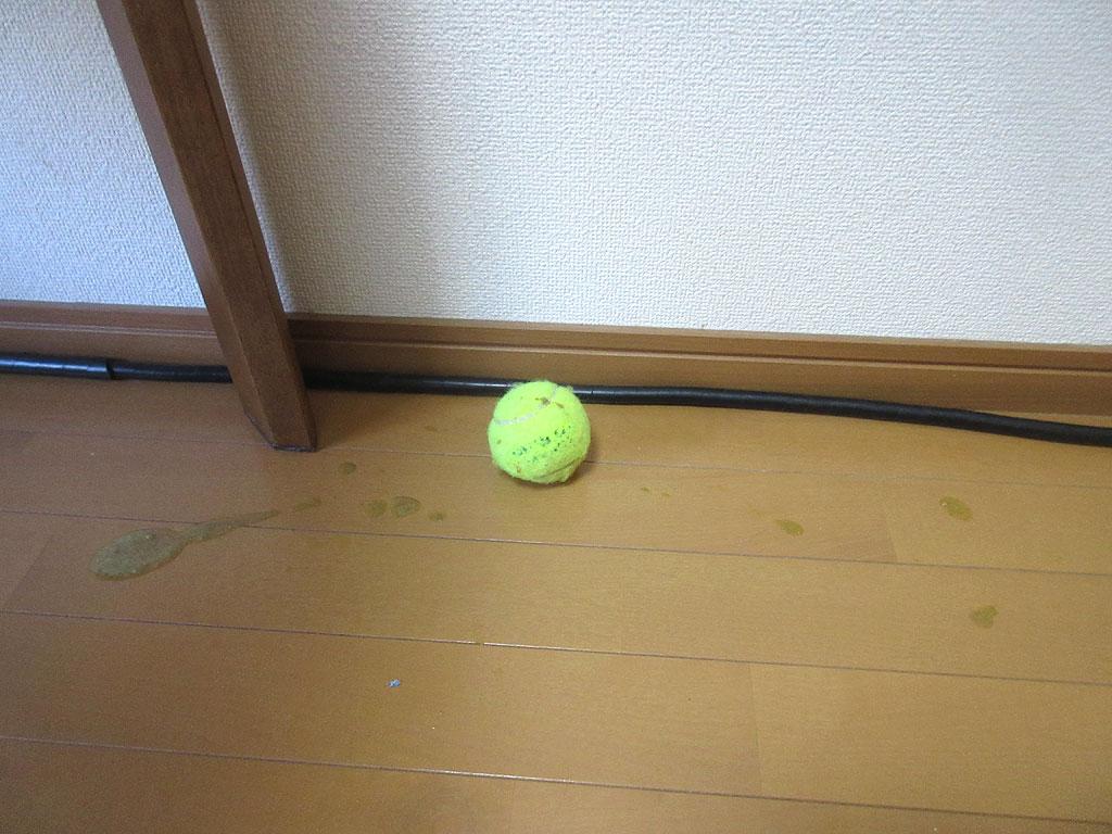 テニスボールにも吐いた跡。