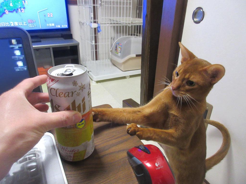 正月なのでアルコールを。