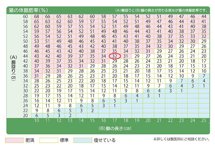 アビのすけの体脂肪率は32%。