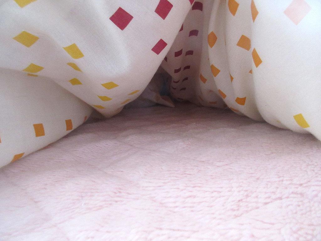 布団の中を覗いてみると...。