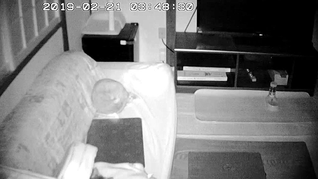 一人で寝ていたアビのすけ。