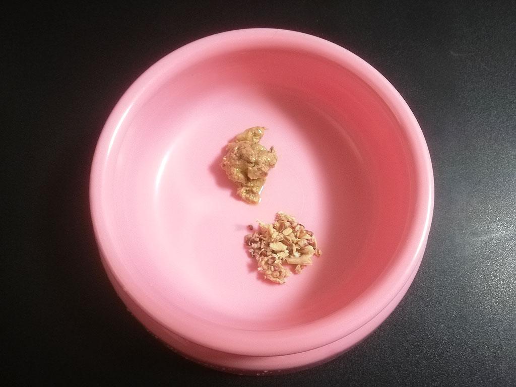 3/4(月)のアビのすけの朝ご飯。