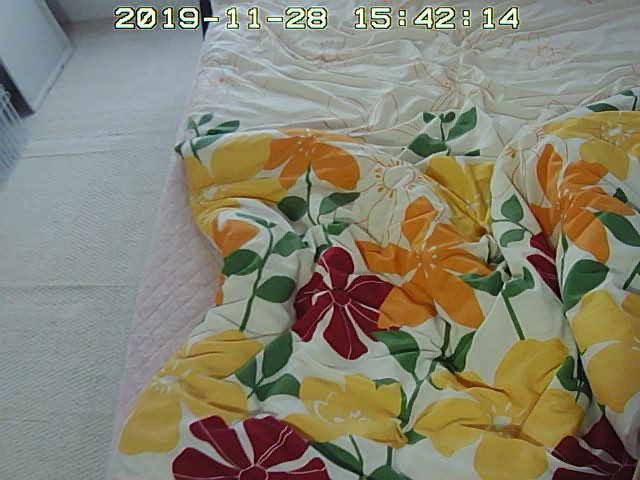 sumaho-20191128_1542